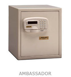 Ambassador Wall Safe